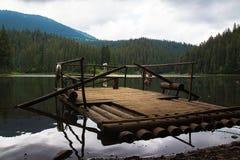 Lago Synevyr Immagine Stock