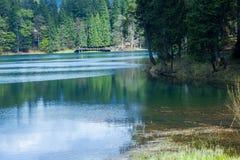 Lago Synevyr mountain Imagem de Stock