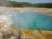 Lago térmico azul em Yellowstone Fotos de Stock Royalty Free