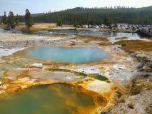 Lago térmico colorido sumário em Yellowstone Fotografia de Stock