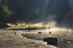 Lago tórrido en el bosque fotografía de archivo