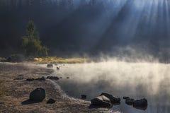 Lago tórrido en el bosque foto de archivo