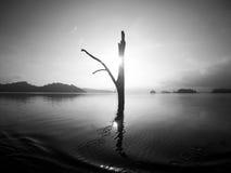 Lago Tailândia Khao Sok Imagem de Stock Royalty Free