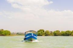Lago Tana in Etiopia Immagine Stock Libera da Diritti