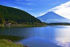 Lago Tanuki Fotografie Stock Libere da Diritti