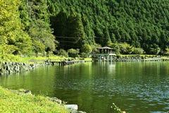 Lago Tanuki immagini stock