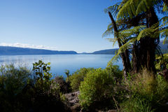 Lago Tarawera Immagini Stock
