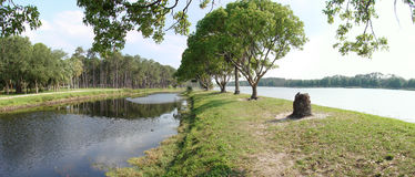Lago Taylor, Largo, Florida Foto de Stock