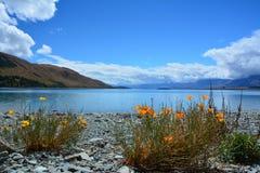 Lago Tekapo Imagenes de archivo