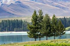Lago Tekapo, isola del sud, Nuova Zelanda Immagini Stock Libere da Diritti