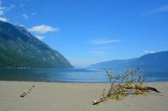 Lago Teletskoe Montagne di Altai, Siberia La Russia Fotografia Stock Libera da Diritti