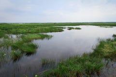 Lago Thale Noi Imagens de Stock