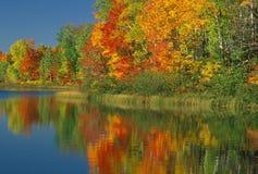 Lago Thornton do outono Foto de Stock Royalty Free
