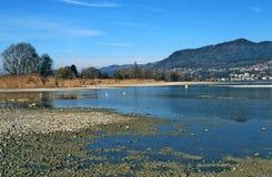 Lago Thun Fotos de Stock Royalty Free