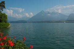 Lago Thun, Suiza Imagen de archivo libre de regalías