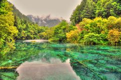 Lago Tibet Fotografia de Stock
