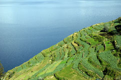 Lago Titicaca, Bolivia Immagini Stock Libere da Diritti