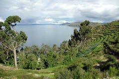 Lago Titicaca, Bolivia Immagini Stock