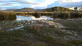 Lago titikaka - Puno Royalty Free Stock Photography