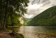 Lago Toplitzsee di estate un giorno nuvoloso Fotografia Stock Libera da Diritti