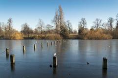 Lago tortuoso, Hyde Park, Londra Fotografia Stock Libera da Diritti