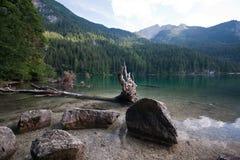 Lago Tovel, Imagens de Stock
