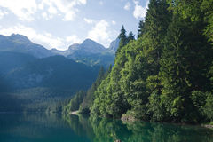 Lago Tovel, Immagine Stock Libera da Diritti