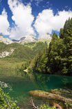 Lago Tovel, Italy Stock Photography
