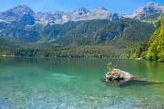 Lago Tovel Trentino Alto Adige, Itália Imagem de Stock Royalty Free