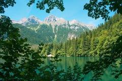 Lago Tovel Trentino Alto Adige, Itália Imagem de Stock
