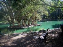 Lago tranquillo ai giardini giapponesi Sydney Fotografia Stock Libera da Diritti