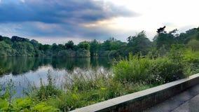 Lago tranquilo fotografía de archivo libre de regalías