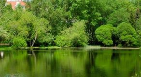 Lago tranquilo en el centro Fotos de archivo libres de regalías