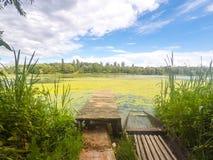 Lago tranquilo en Ucrania Imagen de archivo