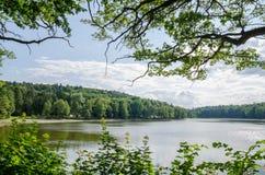 Lago tranquilo hermoso enmarcado por la vegetación natural en República Checa Foto de archivo libre de regalías