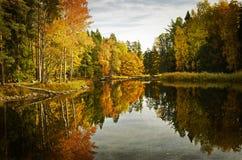 Lago tranquilo. Imágenes conceptuales de la textura fotografía de archivo