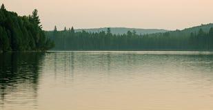 Lago Treeline Otterslide immagini stock
