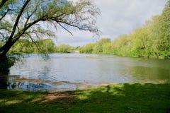 Lago trees ed il paesaggio immagine stock