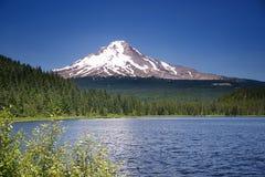 Lago A Trillium Fotografía de archivo libre de regalías