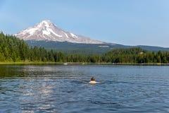 Lago Trillium con il cappuccio di Mt nei precedenti immagini stock libere da diritti