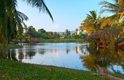 Lago tropical Foto de Stock Royalty Free