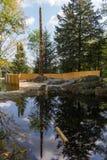 Lago trout in Parc Omega Canada Fotografia Stock