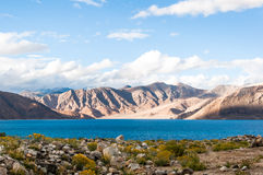 Lago tso di Pangong, Ladakh, il Jammu e Kashmir, India Fotografie Stock