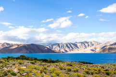 Lago tso di Pangong, Ladakh, il Jammu e Kashmir, India Immagini Stock Libere da Diritti