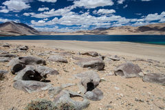 Lago Tso-Moriri Imagem de Stock