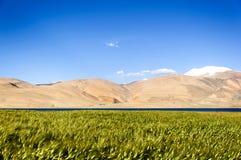 Lago tso Moriri, Ladakh, Jammu y Cachemira, la India Fotos de archivo