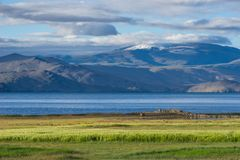 Lago Tsomoriri en la estación de verano, Leh, Ladakh, la India foto de archivo libre de regalías