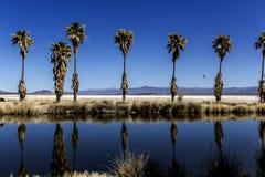Lago Tuendae fotografía de archivo libre de regalías