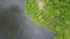 Lago Tulovo landscape almacen de video