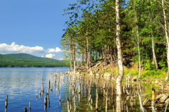 Lago Turgoyak, Urales meridionales Fotografía de archivo